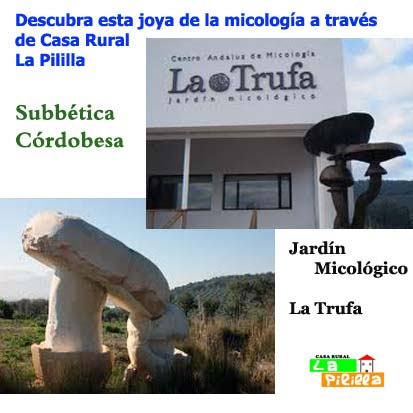 Casa rural la pililla carcabuey for Jardin micologico la trufa